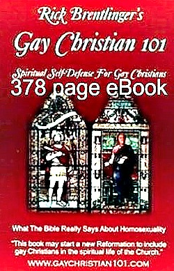 Gay christian 101 world class biblical defense for gay christians gay christian 101 ebook tells you the truth and strengthens your faith in jesus fandeluxe Image collections