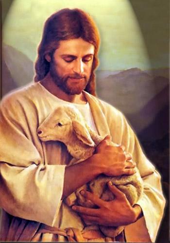 Jesus Study Aids