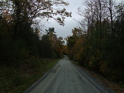 Snake Mountain Road<br> Weybridge, Vermont