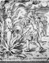 John Calvin burning Michael Servetus
