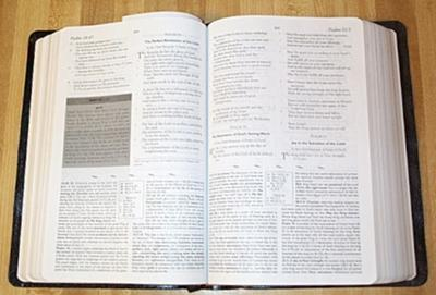 Study Bibles have helpful notes and info